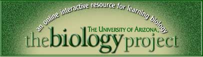 The Biology Project at The University of Arizona
